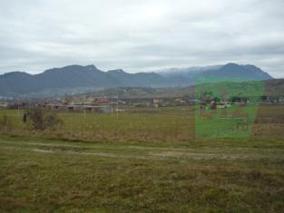 teren Tohanu Nou Zarnesti