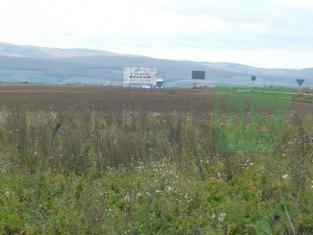 teren Periferie Brasov